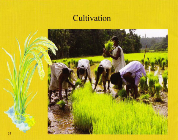 gudalur_food_book_2013_75dpi_33