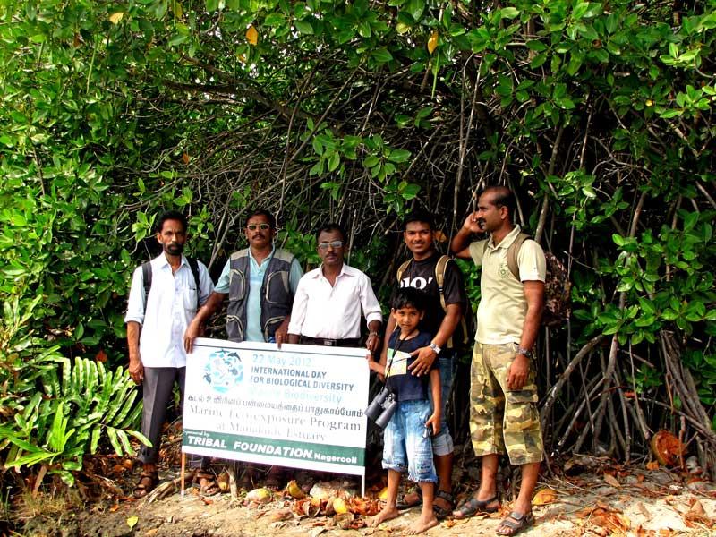 tribalfound_biodiversity_2012_mangroves_web
